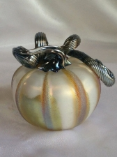 Iridescent White Pumpkin with silver Curly Stem